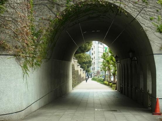 2010111310.jpg