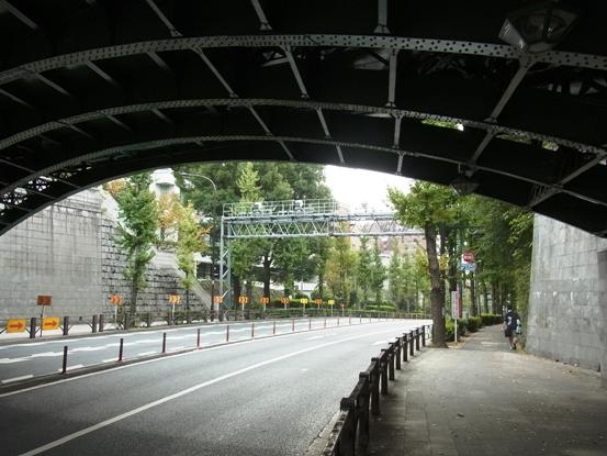2010112111.jpg