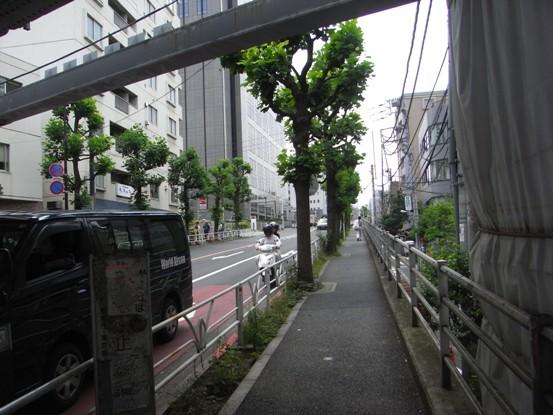 2011010310.jpg